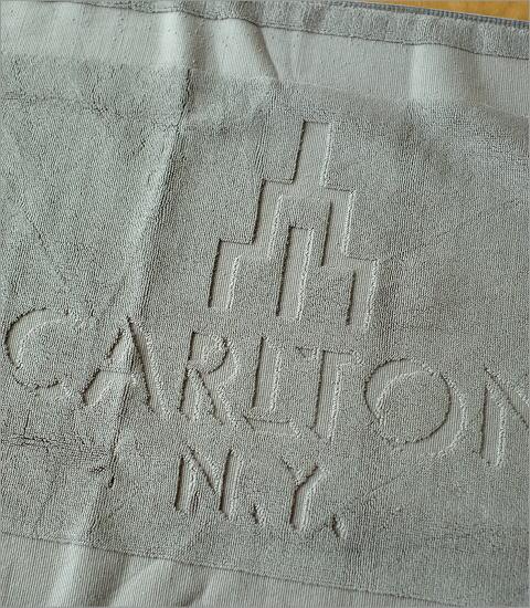 カールトンバスマット(2)