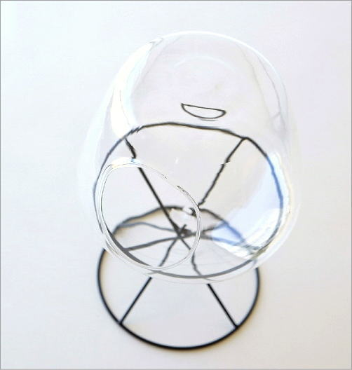 ガラスドームテラリウム(2)