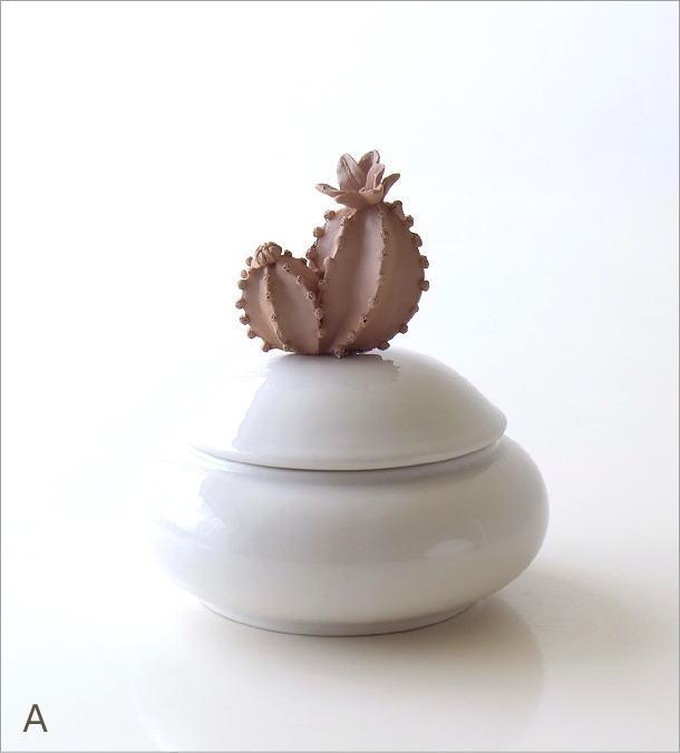 陶器のサボテンポット2タイプ(3)