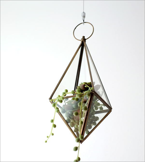ハンギングガラステラリウム 三角(1)