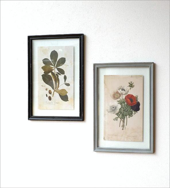 アンティークな植物画フレーム 2タイプ(1)