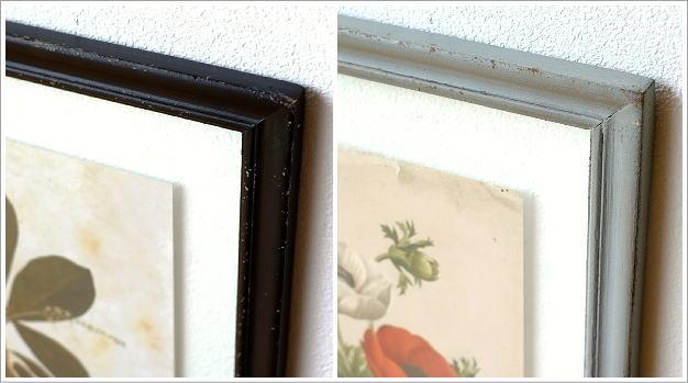 アンティークな植物画フレーム 2タイプ(3)