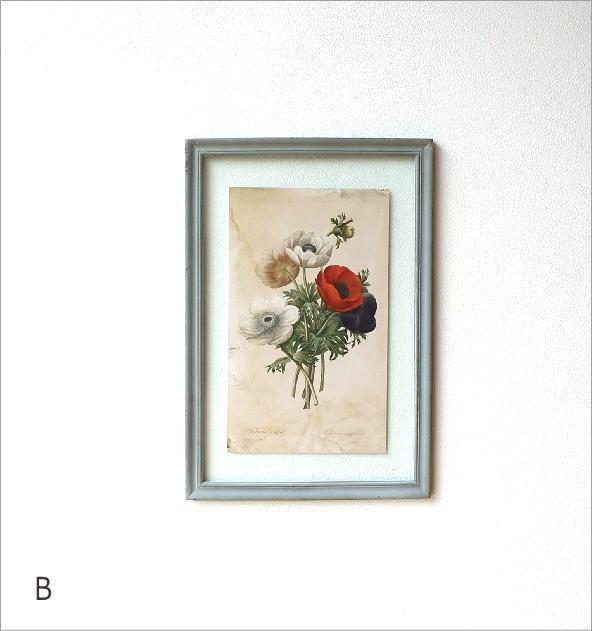 アンティークな植物画フレーム 2タイプ(6)