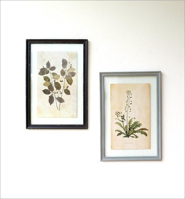 アンティークな植物画フレームB 2タイプ(1)