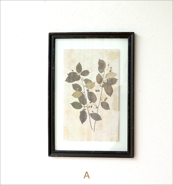 アンティークな植物画フレームB 2タイプ(6)