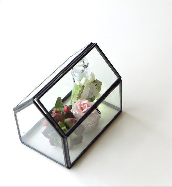 アイアンとガラスのテラリウム ハウス(1)