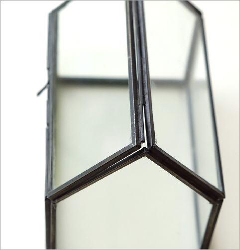 アイアンとガラスのテラリウム ハウス(2)