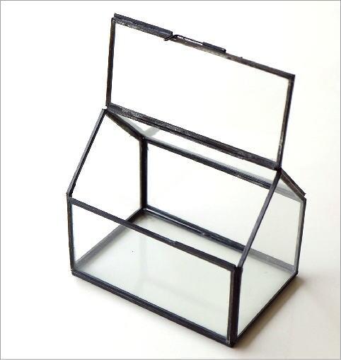 アイアンとガラスのテラリウム ハウス(3)