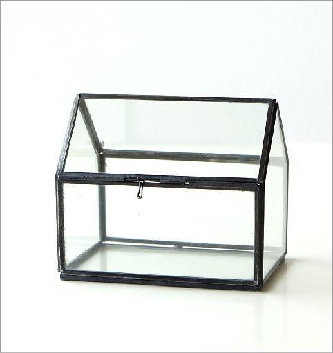 アイアンとガラスのテラリウム ハウス(4)