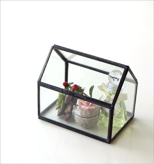 アイアンとガラスのテラリウム ハウス(5)