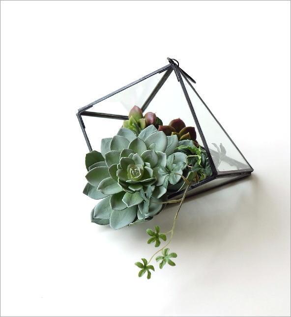 アイアンとガラスのテラリウム A(5)