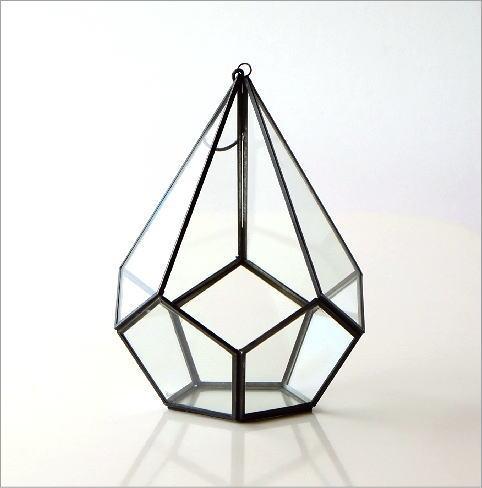 アイアンとガラスのテラリウム B(3)