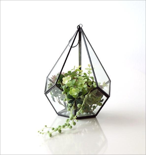 アイアンとガラスのテラリウム B(5)