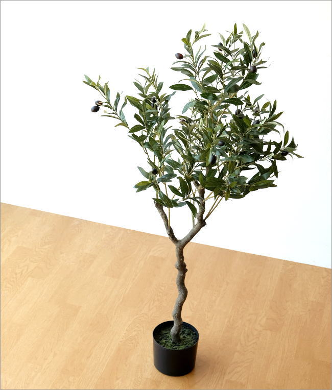 フェイクグリーン オリーブの木(1)