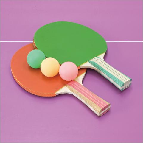バカンスキャリー卓球台セット(3)
