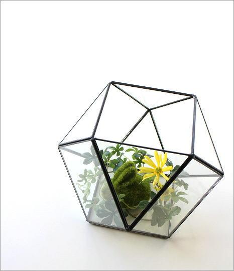 小さなガラスのテラリウムB(1)