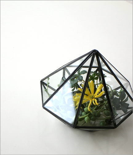 小さなガラスのテラリウム(1)