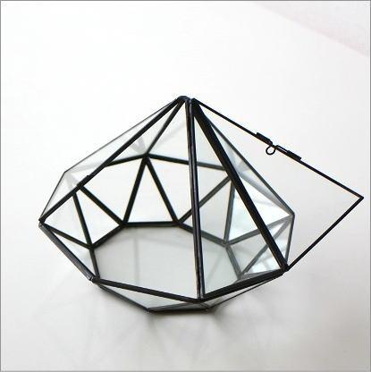 小さなガラスのテラリウム(2)