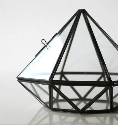 小さなガラスのテラリウム(3)