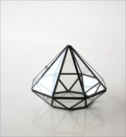 小さなガラスのテラリウム(5)