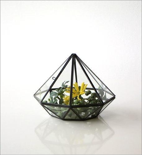 小さなガラスのテラリウム(6)